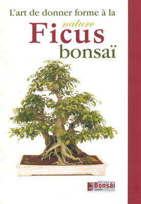 FICUS BONSAI - L'ART DE DONNER FORME A LA NATURE