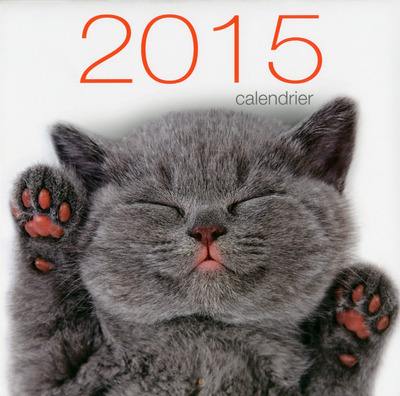 CALENDRIER MURAL CHATS 2015