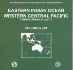 FAO SPECIES IDENTIFICATIONS SHEETS FOR FISHERY PURPOSES. EASTERN INDIAN OCEAN & WESTERN CENTRAL PACI