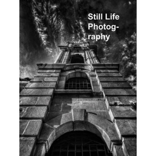 THE BEGINNER'S STILL LIFE PHOTOGRAPHY GUIDE /ANGLAIS