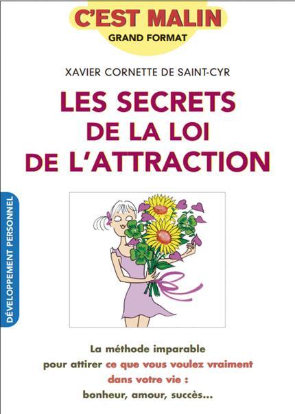 SECRETS DE LA LOI D'ATTRACTION C'EST MALIN (LES)