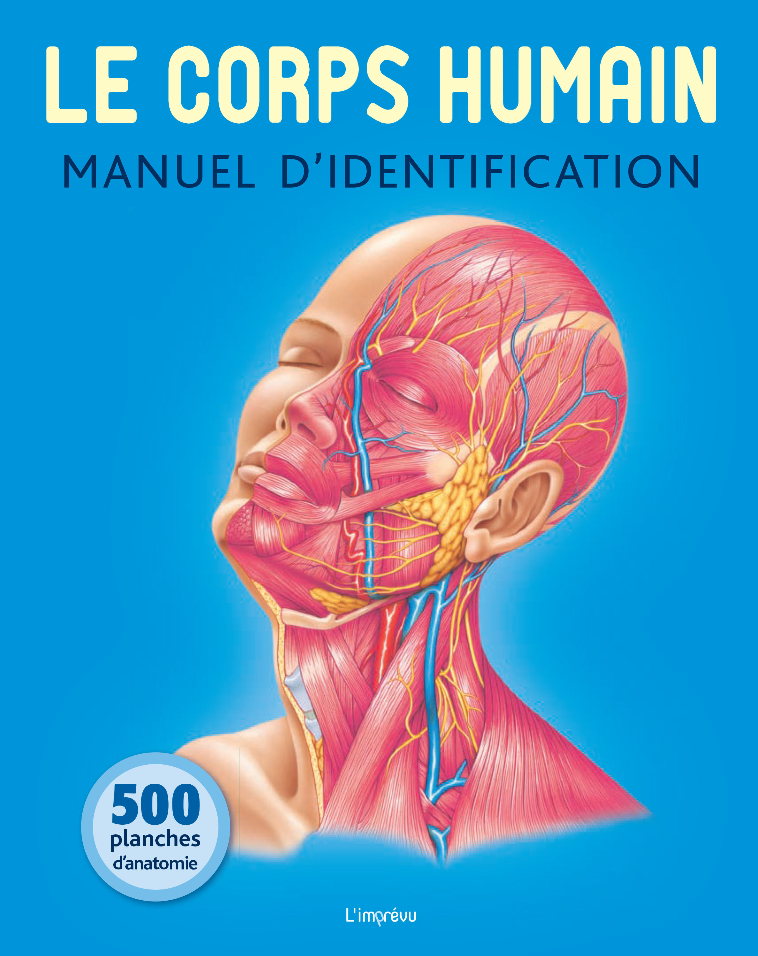 CORPS HUMAIN : MANUEL D'IDENTIFICATION (LE)