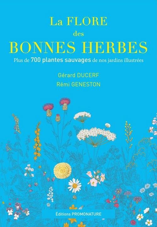 LA FLORE DES BONNES HERBES - PLUS DE 730 PLANTES SAUVAGES DE NOS JARDINS ILLUSTREES