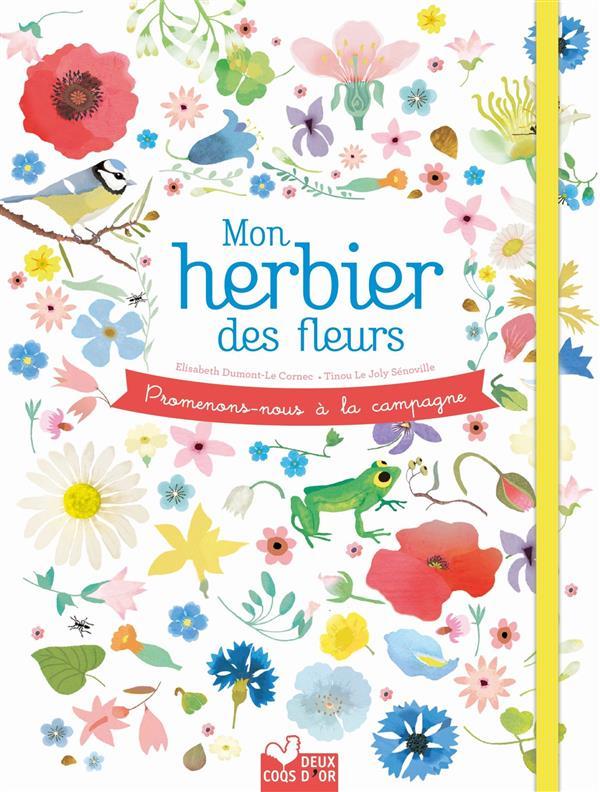 PROMENONS-NOUS A LA CAMPAGNE - MON HERBIER DES FLEURS
