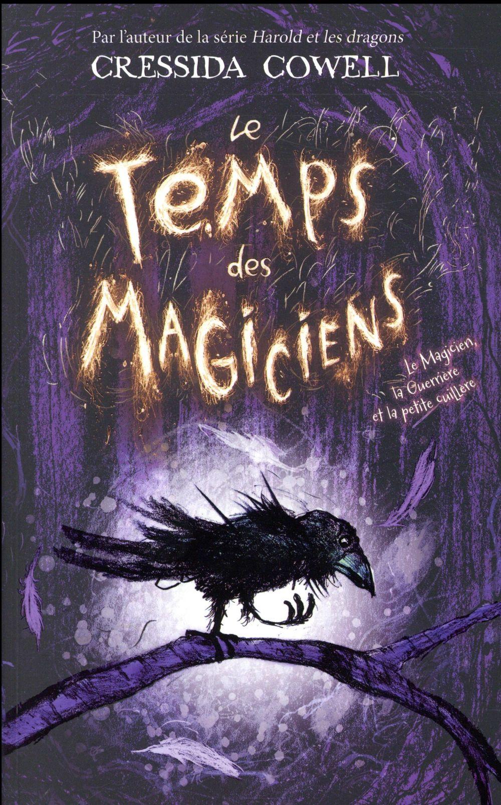 LE TEMPS DES MAGICIENS - TOME 1 - LE MAGICIEN, LA GUERRIERE ET LA PETITE CUILLERE