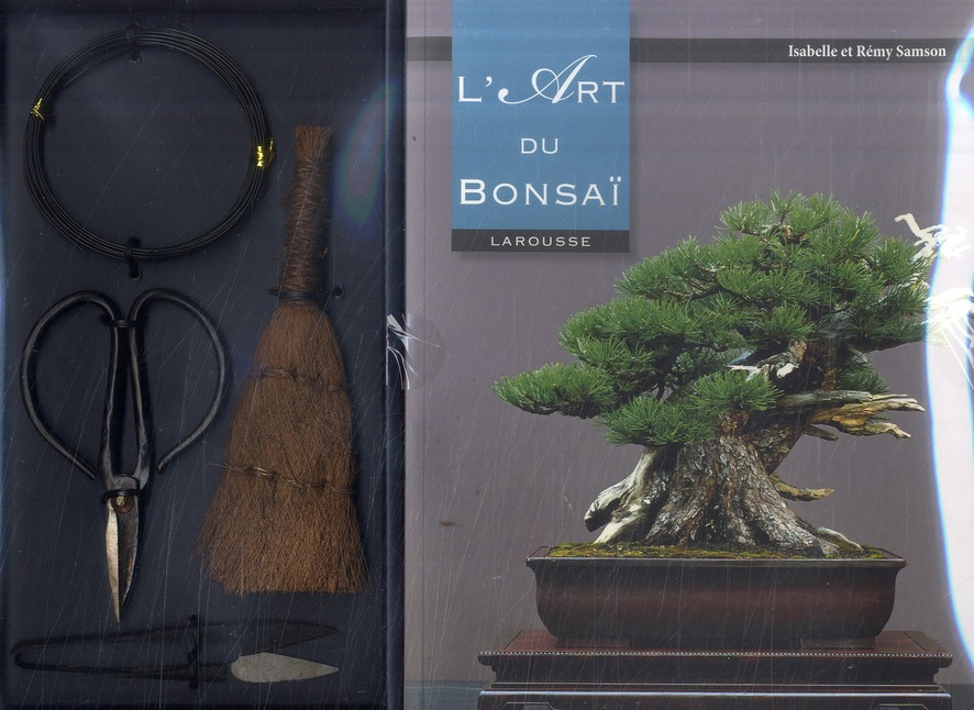 L'ART DU BONSAI