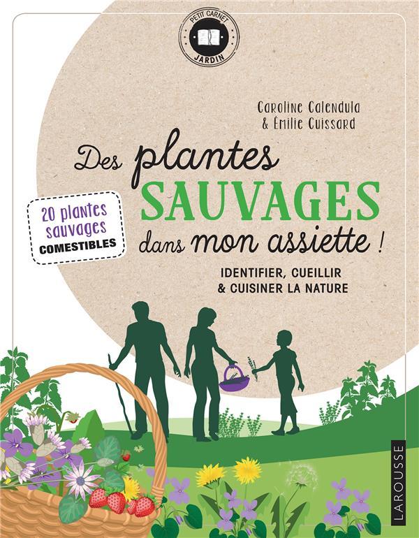 DES PLANTES SAUVAGES DANS MON ASSIETTE !