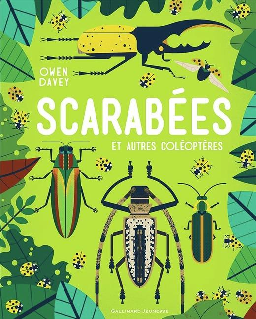 SCARABEES ET AUTRES COLEOPTERES