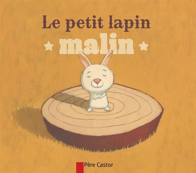 LE PETIT LAPIN MALIN