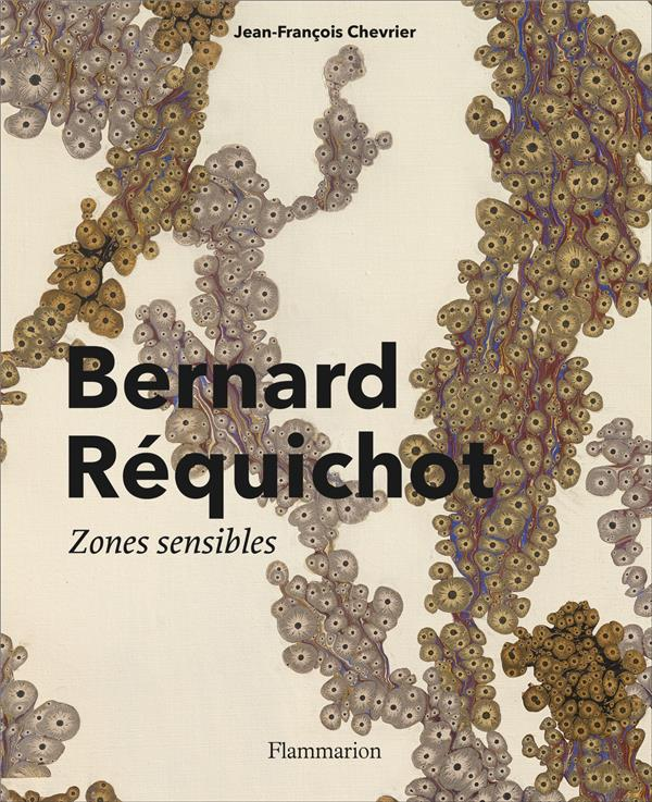 BERNARD REQUICHOT - ZONES SENSIBLES