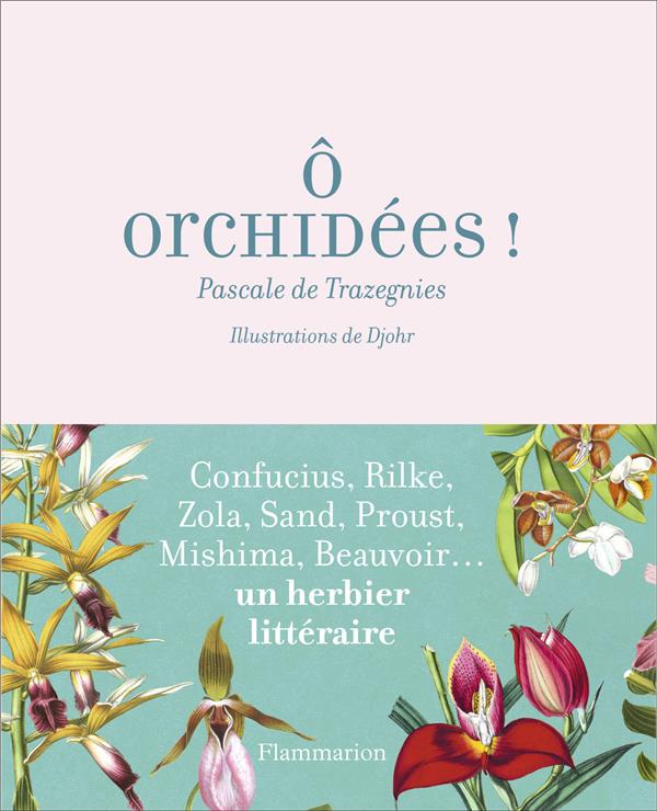 O ORCHIDEES ! - DE CONFUCIUS AUX WHITE STRIPES