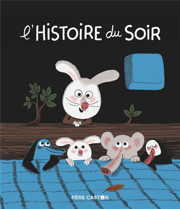 L'HISTOIRE DU SOIR