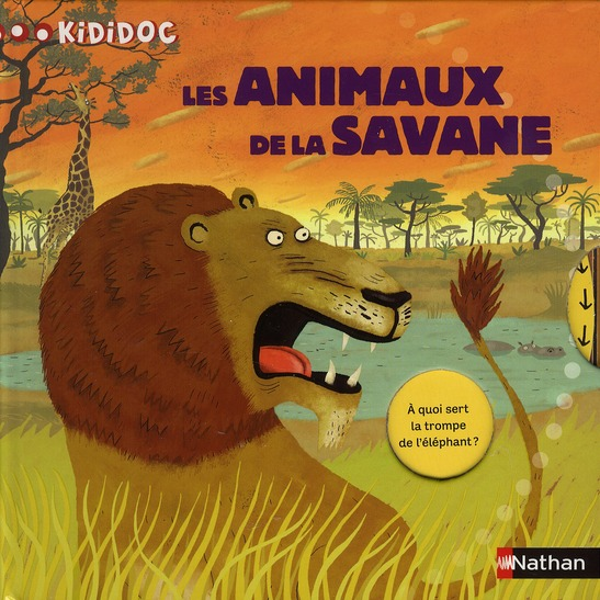 N15 - ANIMAUX DE LA SAVANE