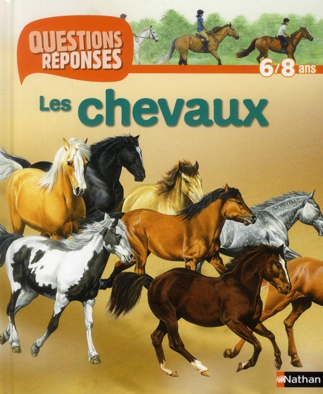 N01 - CHEVAUX