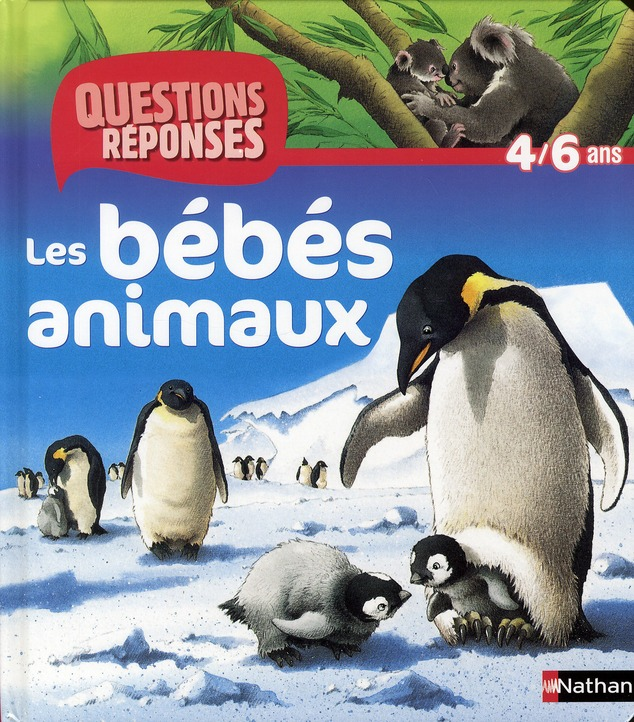 N09 - BEBES ANIMAUX