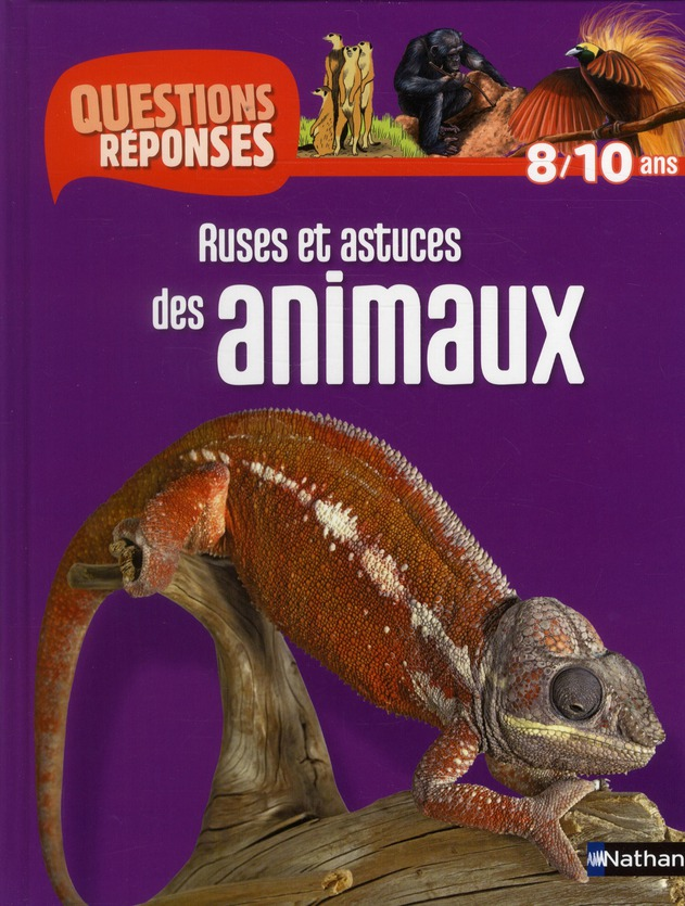 N07 - RUSES ET ASTUCES ANIMAUX