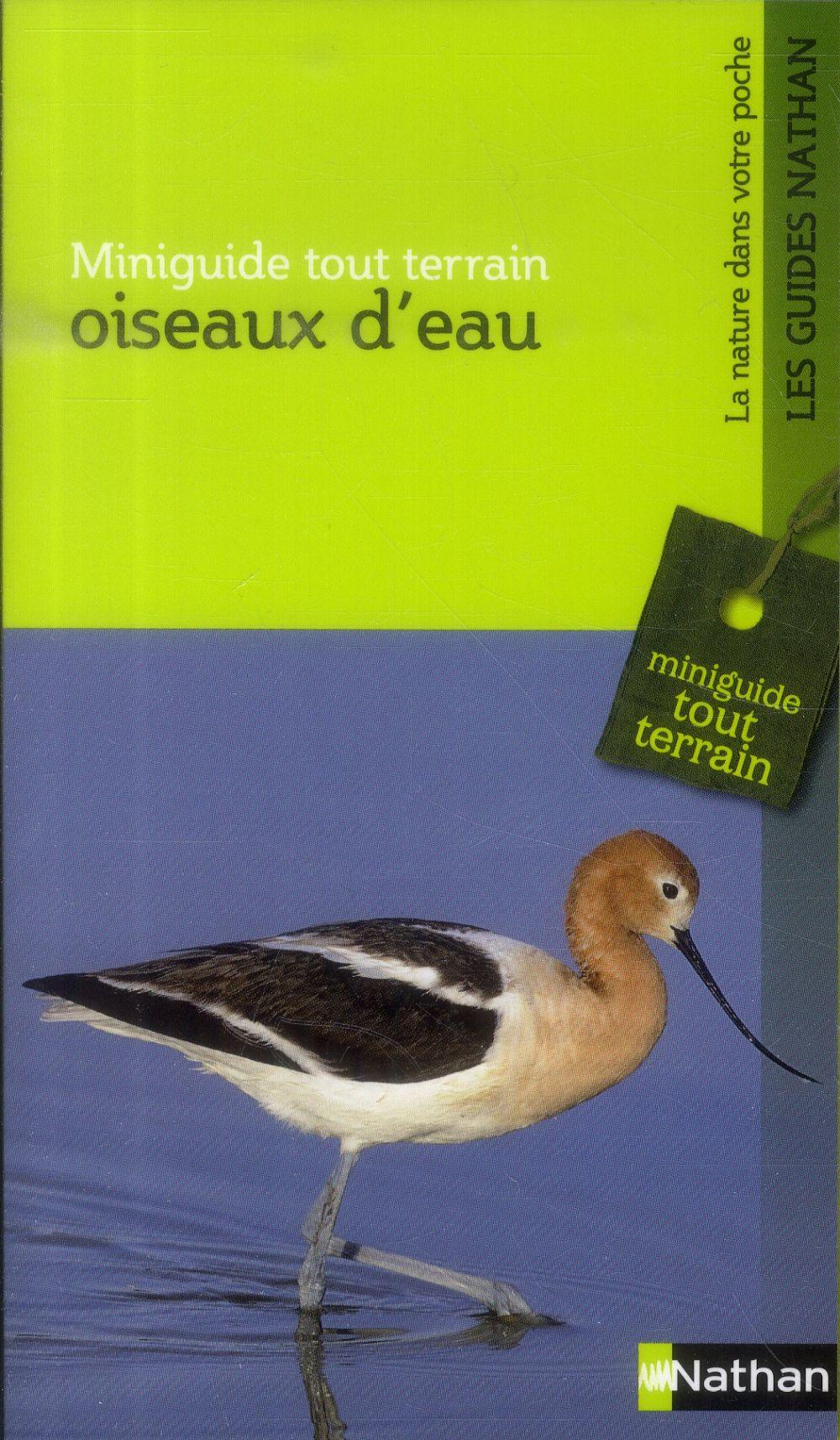 OISEAUX D'EAU MINIGUIDE TT