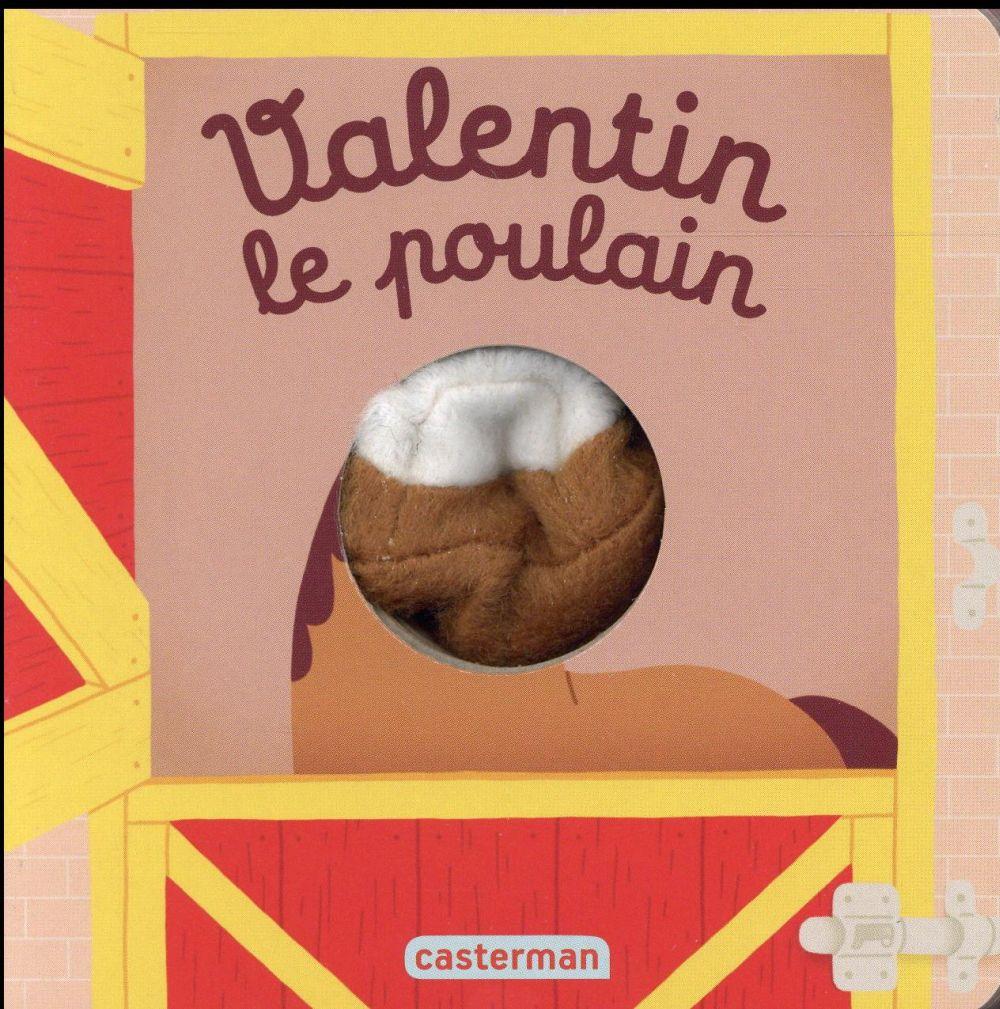 VALENTIN LE POULAIN
