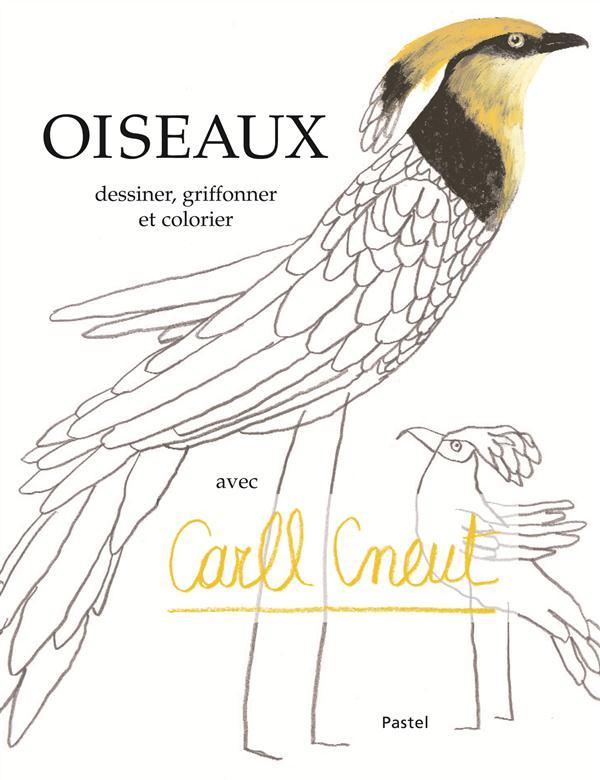 OISEAUX DESSINER, GRIFFONNER ET COLORIER AVEC CARLL CNEUT