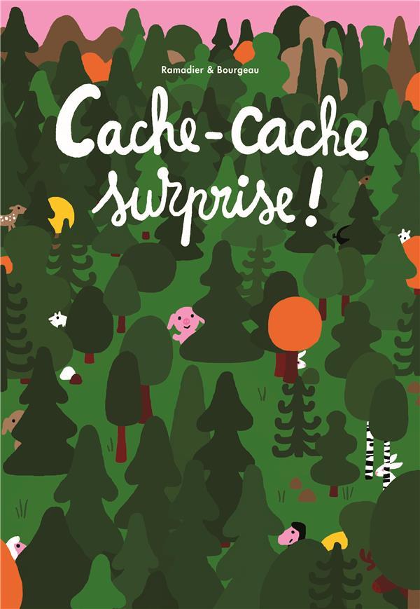 CACHE-CACHE SURPRISE