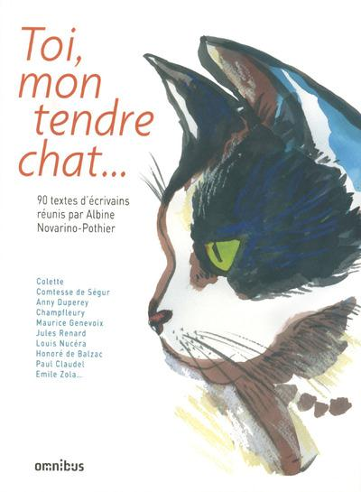 TOI, MON TENDRE CHAT