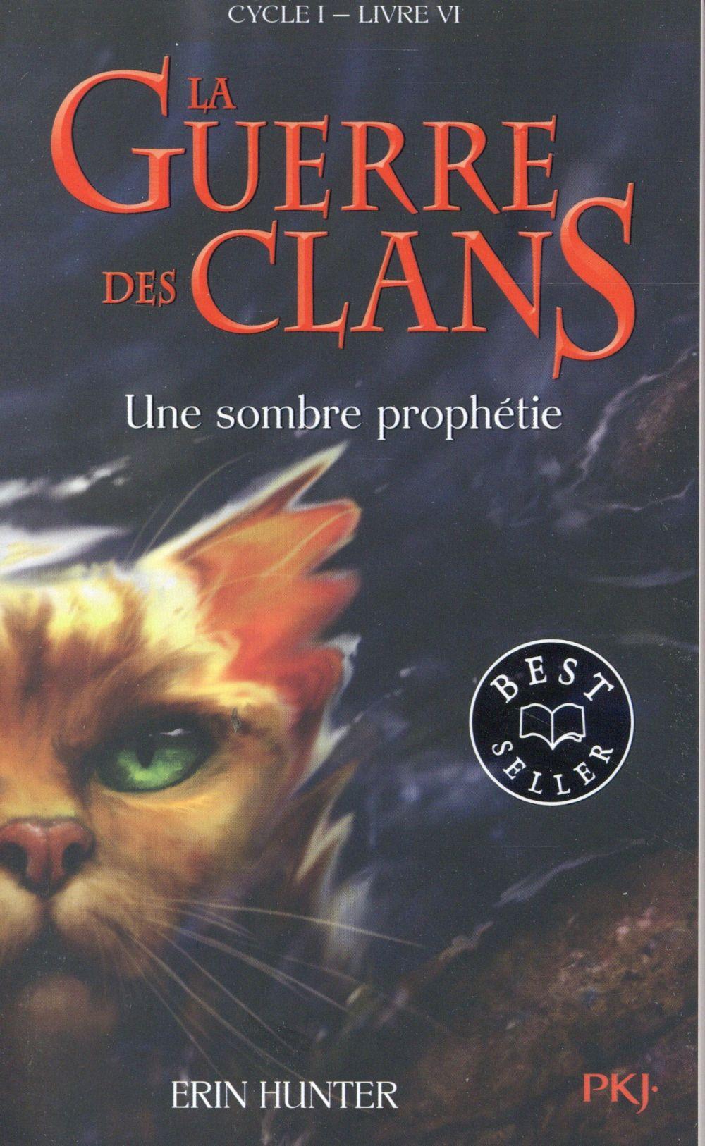 LA GUERRE DES CLANS - CYCLE I - TOME 6 UNE SOMBRE PROPHETIE -POCHE- - VOL06