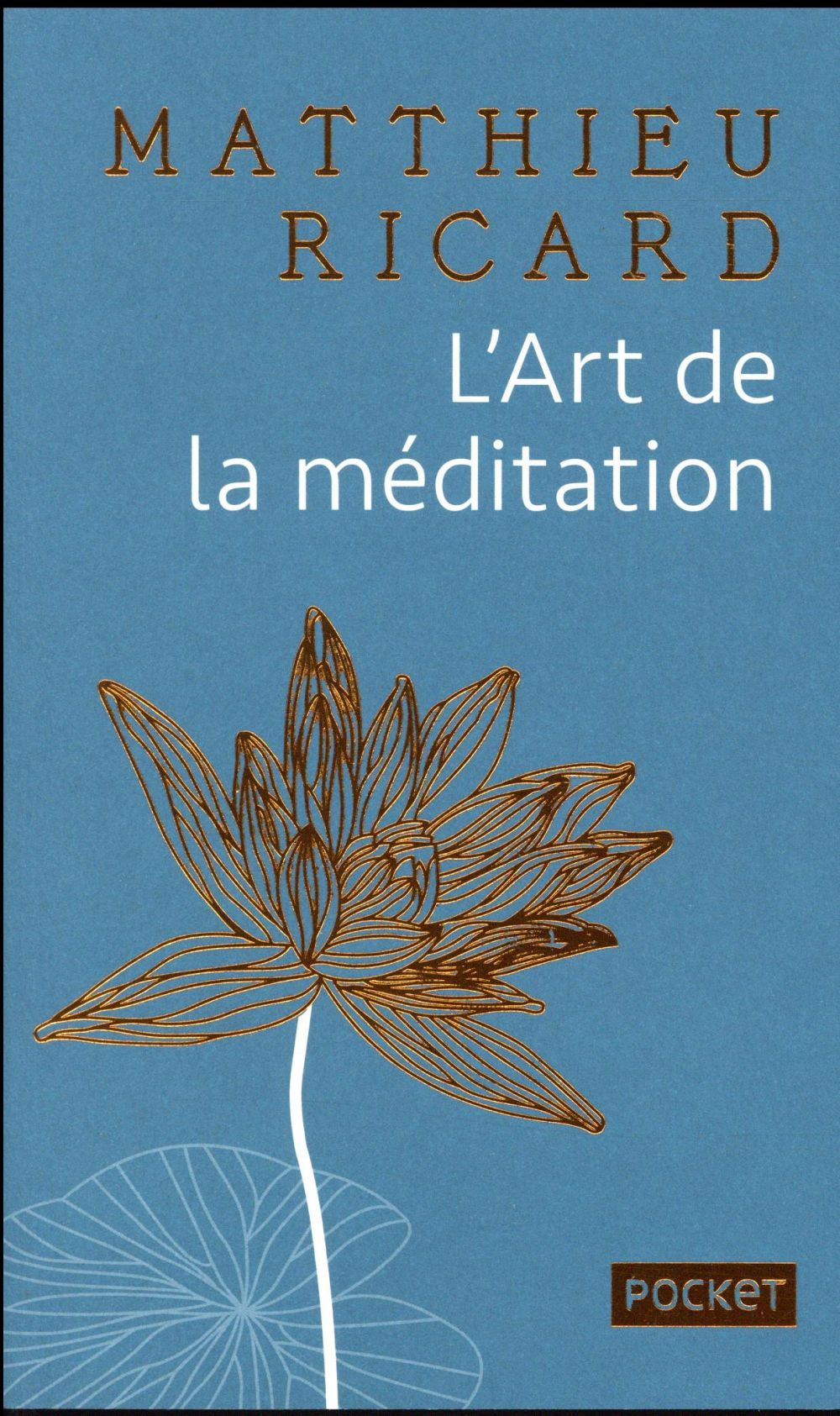 L'ART DE LA MEDITATION - COLLECTOR