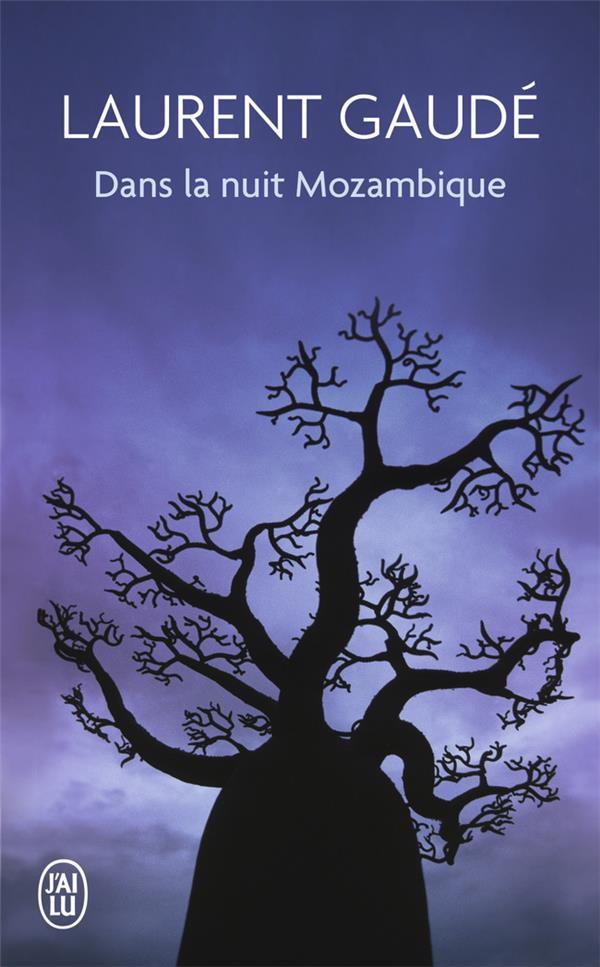 DANS LA NUIT MOZAMBIQUE - ET AUTRES RECITS