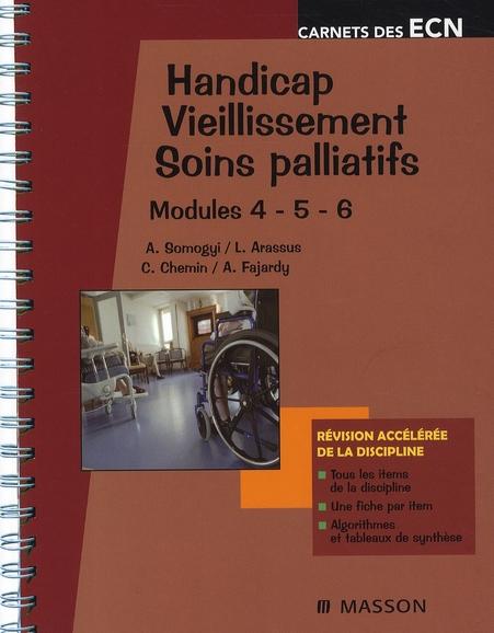 HANDICAP - VIEILLISSEMENT - SOINS PALLIATIFS