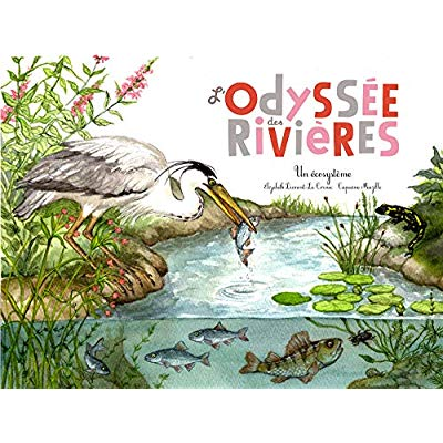 L'ODYSEE DES RIVIERES (COLL. OHE LA SCIENCE !)