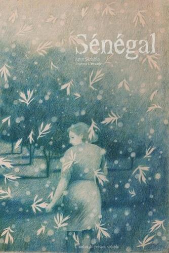 SENEGAL - ILLUSTRATIONS, COULEUR