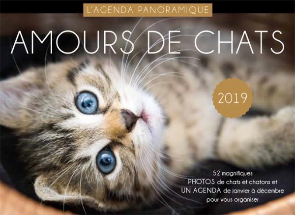 AGENDA PANORAMIQUE AMOURS DE CHATS 2019