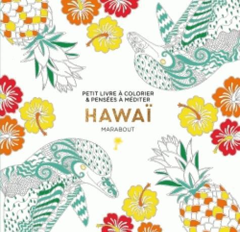 LE PETIT LIVRE DE COLORIAGE : HAWAI