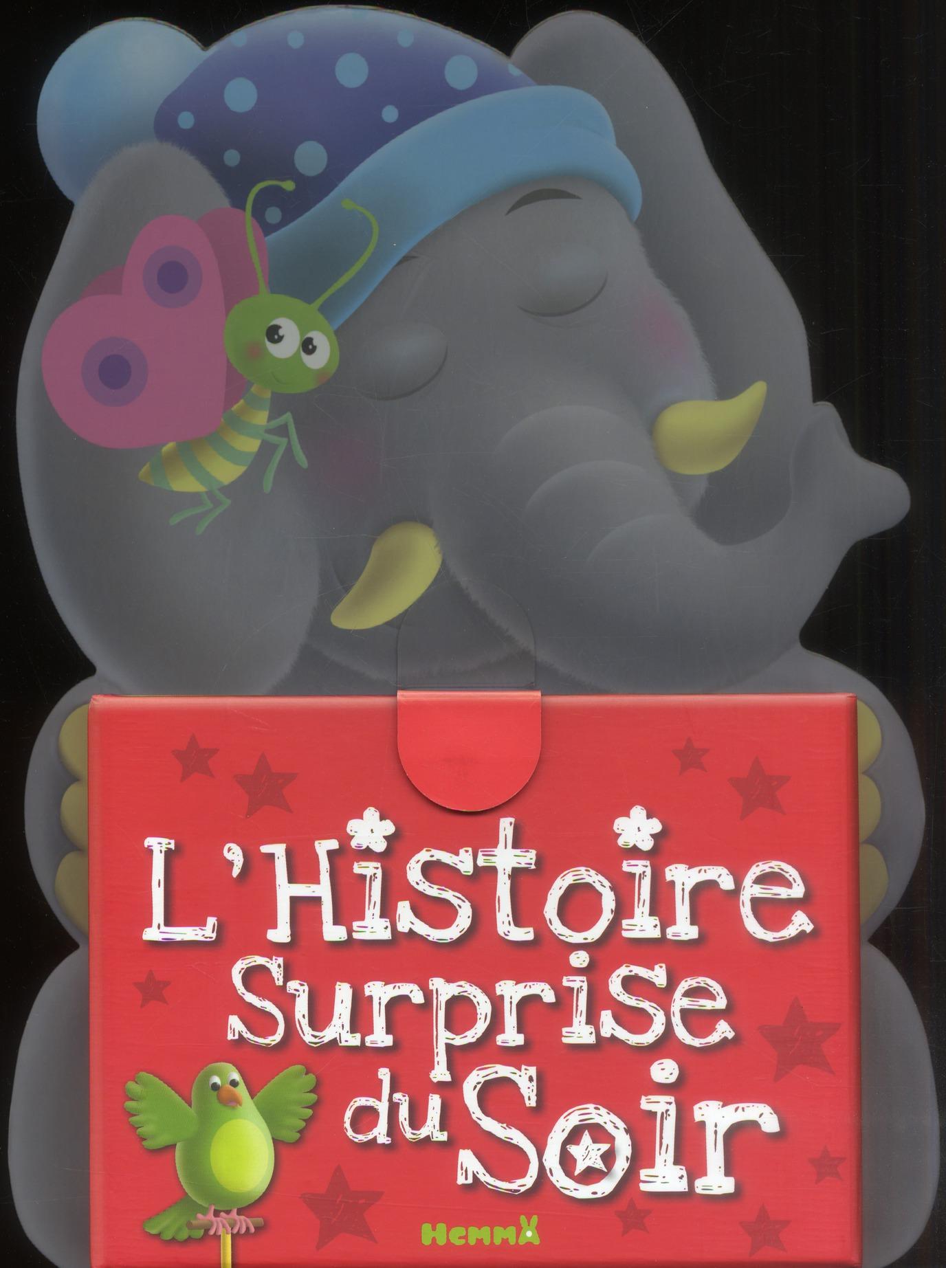 L'HISTOIRE SURPRISE DU SOIR
