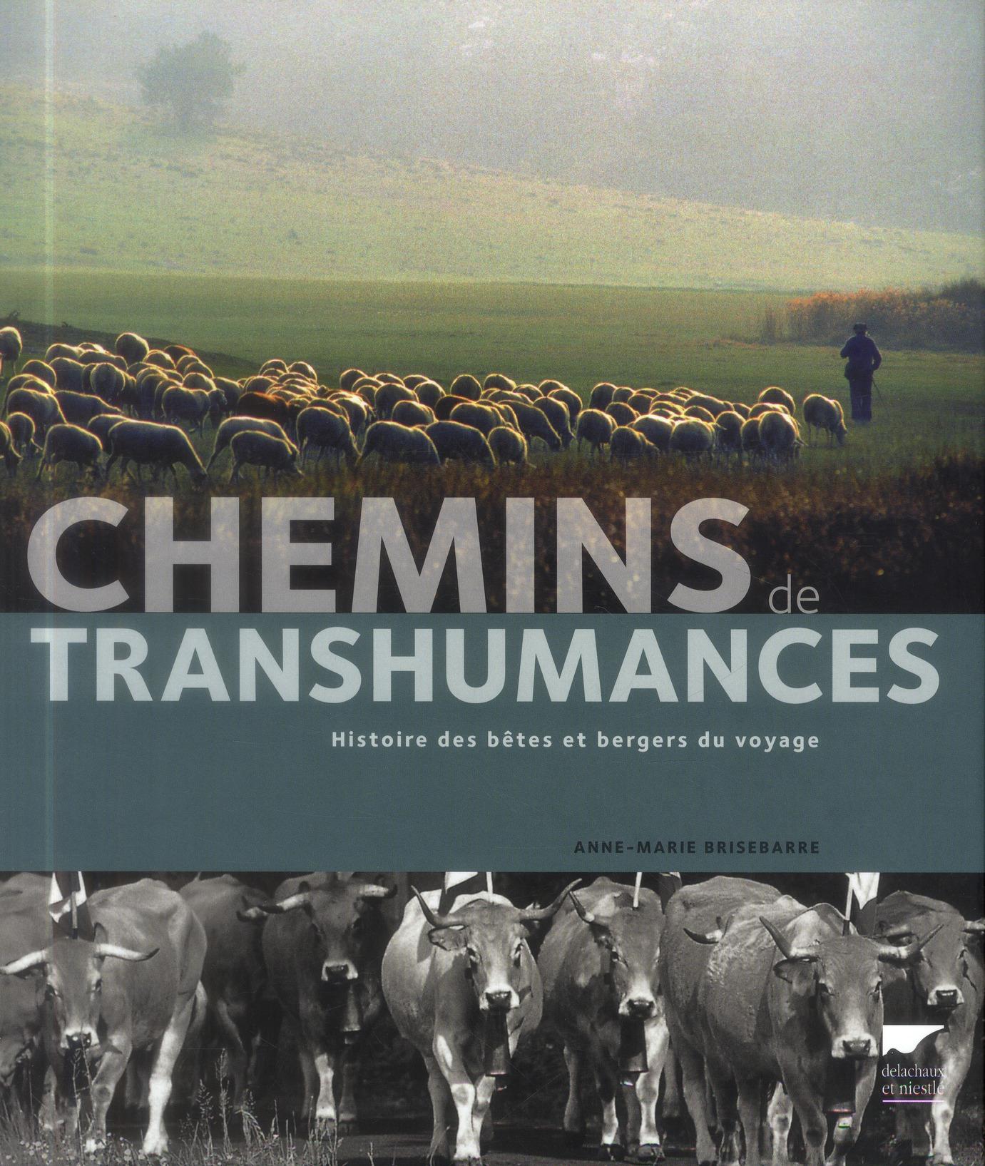 CHEMINS DE TRANSHUMANCES. HISTOIRE DES BETES ET BERGERS DU VOYAGE