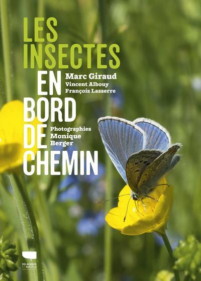 LES INSECTES EN BORD DE CHEMIN