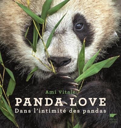 PANDA LOVE DANS L'INTIMITE DES PANDAS