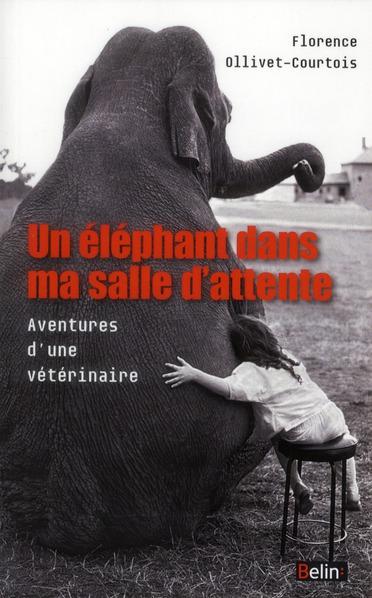 UN ELEPHANT DANS MA SALLE D ATTENTE