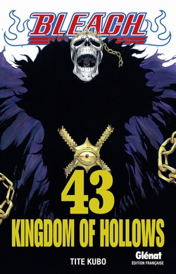 BLEACH - TOME 43 - KINGDOM OF HOLLOWS
