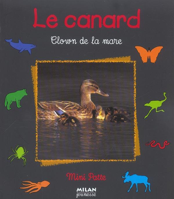 CANARD, CLOWN DE LA MARE (LE)