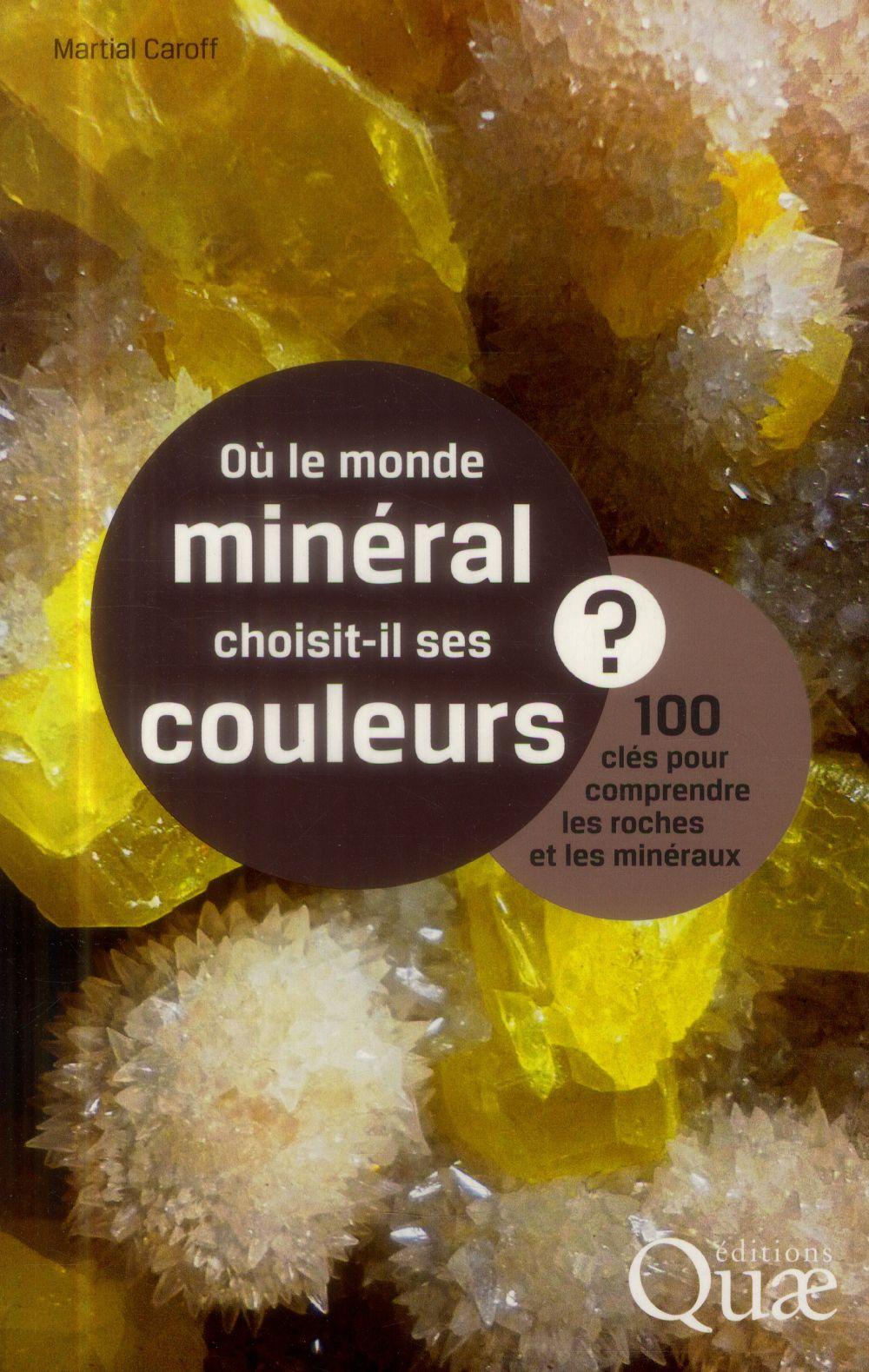OU LE MONDE MINERAL CHOISIT IL SES COULEURS 100 CLES POUR COMPRENDRE LES ROCHES