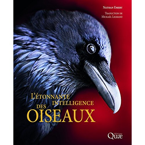 L ETONNANTE INTELLIGENCE DES OISEAUX
