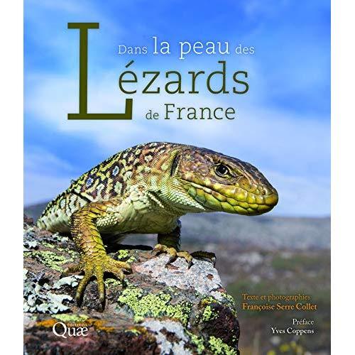 DANS LA PEAU DES LEZARDS DE FRANCE