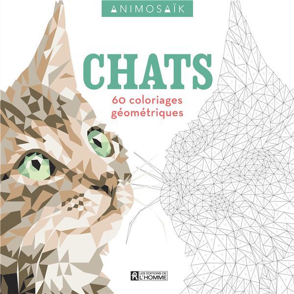 ANIMOSAIK - CHATS