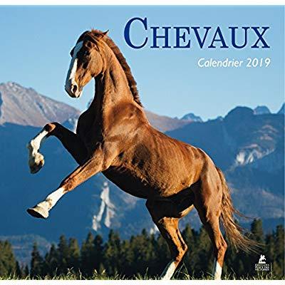 CHEVAUX - CALENDRIER 2019