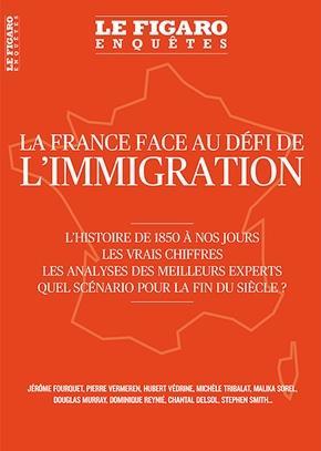 LA FRANCE FACE AU DEFI DE L'IMMIGRATION - L'HISTOIRE DE 1850 A NOS JOURS. LES VRAIS CHIFFRES. LES AN