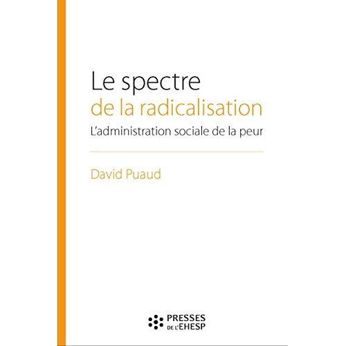 LE SPECTRE DE LA RADICALISATION - L ADMINISTRATION SOCIALE EN TEMPS DE MENACE TERRORISTE