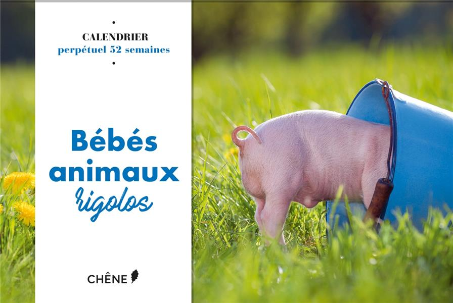 CALENDRIER 52 SEMAINES BEBES ANIMAUX RIGOLOS