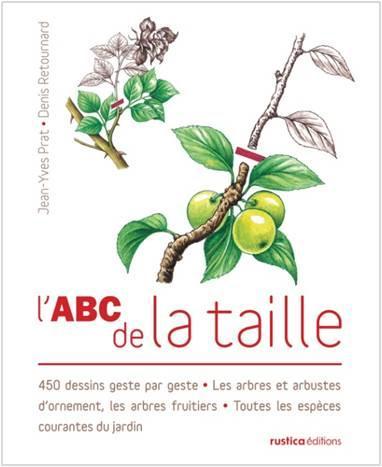 PACK ABC DE LA TAILLE AVEC PRIME