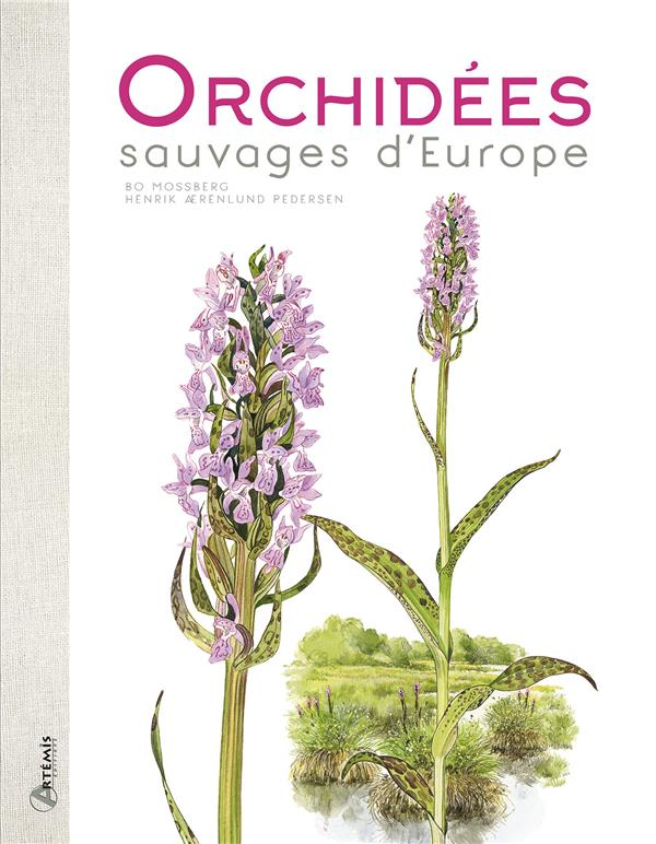 ORCHIDEES SAUVAGES D EUROPE
